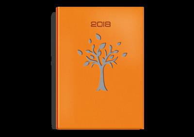 Okładka kk.27  Drzewko Pomarańcz